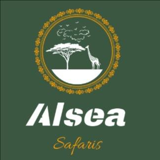 Alsea Safaris : Alsea Safaris organizes personalized intrinsic packages for Holidays, Team Buildings, Road Trips and Hikes.